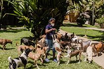 dog care clinic